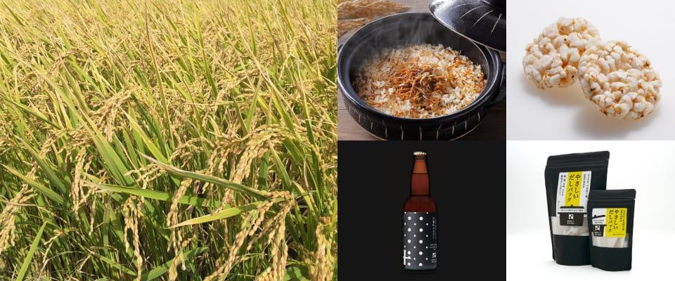 収穫前のお米とオリジナル商品